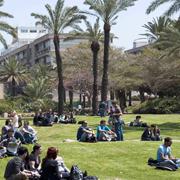 """כ-30,000 סטודנטים ילמדו בתשע""""ד באוניברסיטת תל-אביב"""