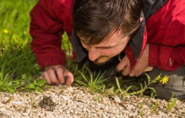 לראשונה בישראל: מבצע השבה לטבע של חפריות מגרעין הרבייה שבגן הזואולוגי עבר בהצלחה
