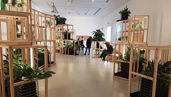 A plant environment that's also an urban environment