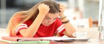 הבזקי זיכרון: מנגנון מוחי ללמידה מהירה