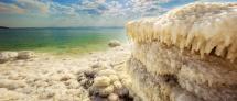 כנס: Life in Extreme Conditions – A Lesson from Nature