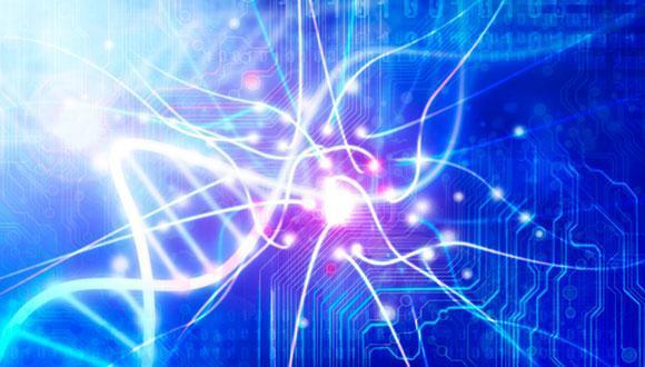 סדרת הרצאות בינתחומית: רפואה – מדעי הרוח
