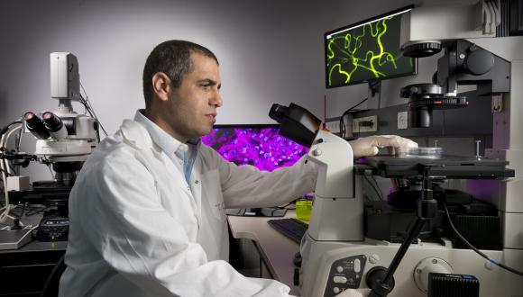 פרופ' טל דביר מהנדס תאים אנושיים להשתלה