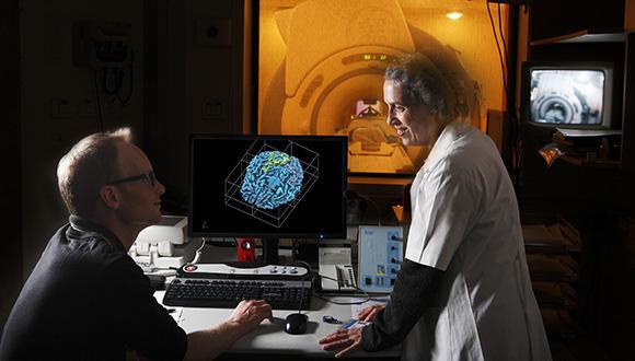 האם המוח שלנו נוטה לזהירות-יתר או לזלזול בסיכונים?