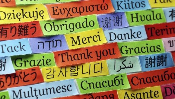 המרכז למצוינות בכישורי שפה מרחיב את פעילותו