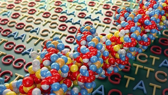 סמינר המחלקה לגנטיקה מולקולרית של האדם ולביוכימיה