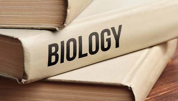 כותבים מחדש את ספרי הלימוד בביולוגיה