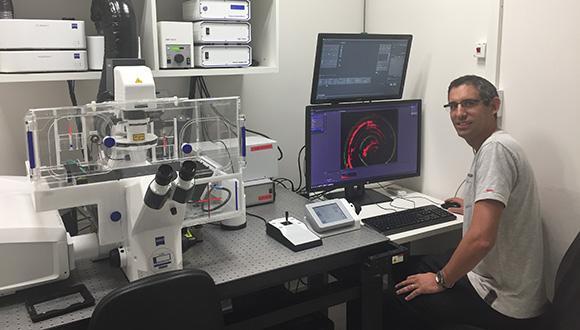 הפיזיקה המפתיעה של תאי שבלול האוזן