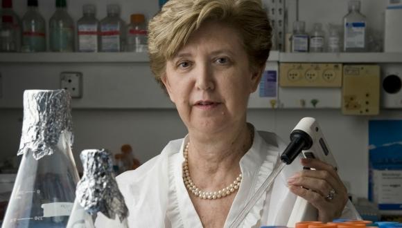 """פרס מפעל הפיס ע""""ש לנדאו בתחום מדעי החיים יוענק לפרופ' אילנה גוזס"""