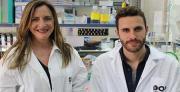 חוקרים מאוניברסיטת תל אביב פיתחו טיפול גנטי לחירשות