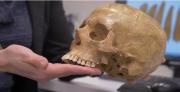 המאובן האנושי העתיק ביותר מחוץ לאפריקה התגלה בישראל