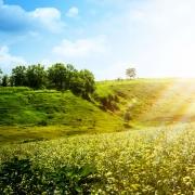 """אתר חדש שפותח על-ידי החוג לגיאוגרפיה ועמותת """"אדם, טבע ודין"""" מרכז מידע סביבתי עבור הגולש"""