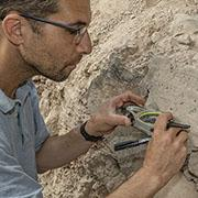 השדה המגנטי שמתגלה מתוך סדקי השרידים הארכיאולוגיים