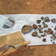 כלי אבן שנחשפו בחפירה בנווה נוי. צילום: ענת רסיוק, רשות העתיקות