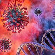 הגנטיקה מפצחת את שרשרת ההדבקות של הקורונה