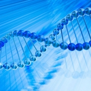 הורשה שלא דרך שינויים ברצף ה-DNA לאורך דורות