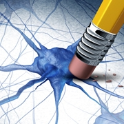 מחקר חדש קושר בין ליקוי במנגנון מרכזי בתאי המוח למחלת הסכיזופרניה