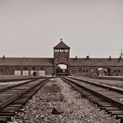 קורס מקוון חדש של פרופ' חוי דרייפוס מספק מבט מרתק אל שולחן העבודה של ההיסטוריון בתחום חקר השואה