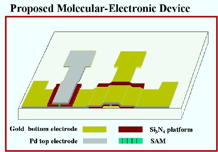 the bio and molecular electronics group
